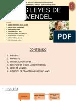 Exposicion de Las Leyes de Mendel