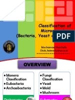 2 Classification of Bacteria Yeast and Mold