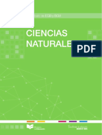 CCNN_COMPLETO.pdf
