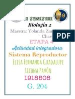 Etapa 4 Biologia 2