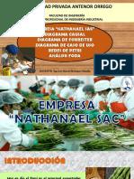 334020169-Empresa-Agroexportadora-Nathanael-5.pptx
