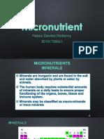 Micronutrient.pptx