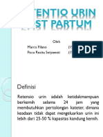 Retentio Urin Post Partum