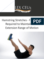 Hamstring Stretches Frequency Required to Maintain Knee Extension Range of Motion