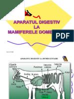 0 Aparatul Digestiv La Mamifere Si Pasari (1)
