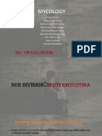 Deuteromycotina