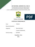 GATA FISICA2 Autoguardado