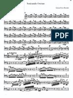 Semiramide Celo.pdf