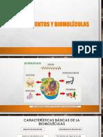 8.-BIOELEMENTOS-BIOLÓGICAS