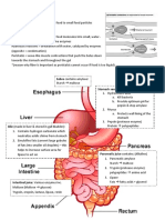 7.4-Chemical-Digestion.docx