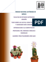 Cactus Características y Variedades