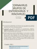 Presentacion Micro Poliomielitis