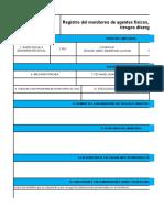 C) Registro Monitoreo de Agentes Fisicos Quimicos Psicosociales y Disergonomicos Gran Empresa