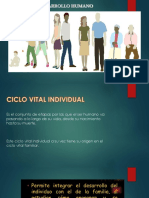 ciclo vital individual