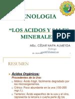 Proyecto de Inversión Para La Elaboración y Comercialización de La Mermelada de Ciruela Light Para La Ciudad de Guayaquil