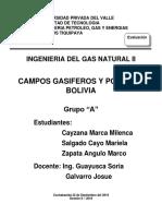 Campos Pozos Gasiferos de Bolivia