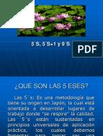 5 ESES (5 S).pdf
