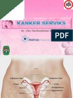 CA Cervix GH Universal Fin