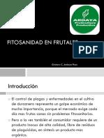 Fitosanidad en Frutales