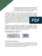 emaniero.pdf