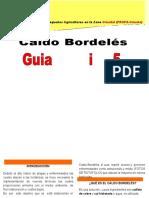 CALDO BORDELES.doc