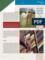 capayanes.pdf
