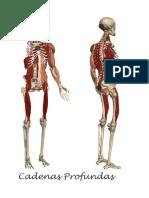 cadenas musculares osteopatia
