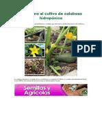 Guía para el cultivo de calabaza hidropónica.docx