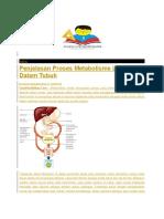 metabolisme lemak 3.docx