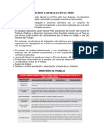 Derechos y Deberes Laborales en El Peru Yeder (1)