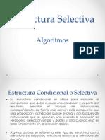 estructura-selectiva