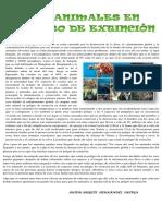 Articulo de Los Animales en Peligro de Extinción