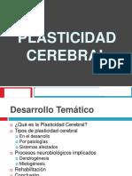 Plasticidad Neuronal
