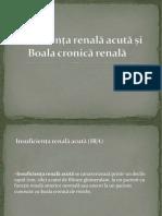 4.IRA-si-BCR.pdf
