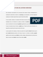 SEMANA 3 SISTEMA NERVIOSO.pdf