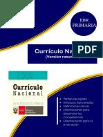 0CURICULO NAC. Resumen.docx