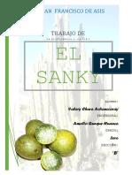 SANKY-TRABAJO DE INVESTIGACIÓN.docx