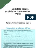 Contaminacion del agua IA