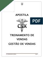 APOSTILA CSX 2014 gerenciamento.doc