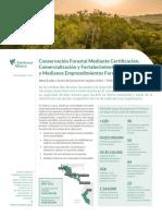 Conservación Forestal Mediante Certificación, Mercados y Fortalecimiento de La Pequeña y Mediana Empresa Forestal