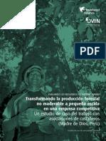 Transformando La Producción Forestal No Maderable a Pequeña Escala en Una Empresa Competitiva - R Alliance