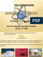 GonzalezPuertos_Maribel_M14S1_materia organizada.pptx