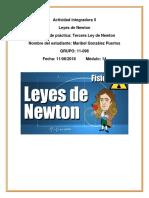 GonzalezPuertos_Maribel_M14S3_LeyesdeNewton.docx