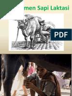 document manajemen pemerahan.pdf