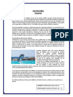 texto espositivo.docx