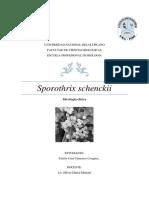 Sporothrix schenckii