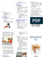 241797843-Leaflet-ISPA-1-doc.doc