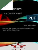 Circle of Willis