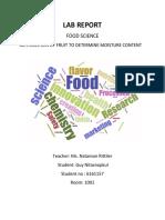 foodscience lab reports