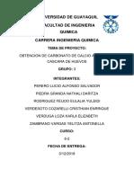 CARBONATO DE CALCIO.docx